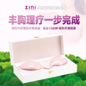 ZINI 智能无线胸部按摩器震动丰胸内衣(货号:A1034)